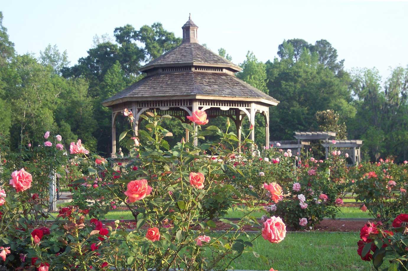 Visit Thomasville's Rose Garden